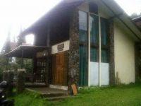Villa Tulip W3