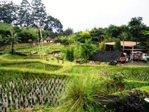 IMG20160401140928-300x225 Tempat Wisata Terdekat Villa Istana Bunga Lembang