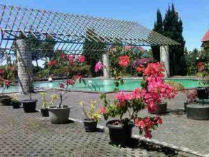 IMG00770-20140903-1135-300x225 Mengisi Liburan Natal dan Tahun Baru di villa istana bunga Lembang Bandung